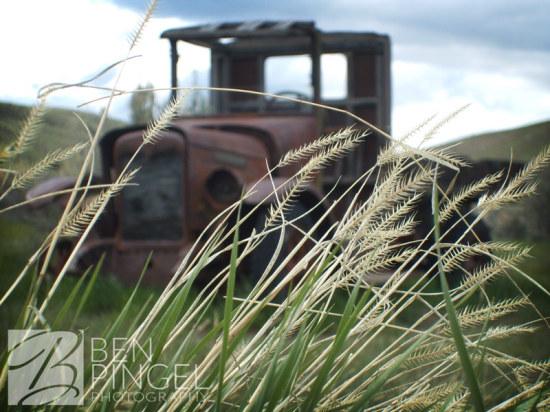 Truck in the Brush