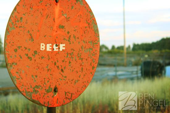 BenPingel_Beef