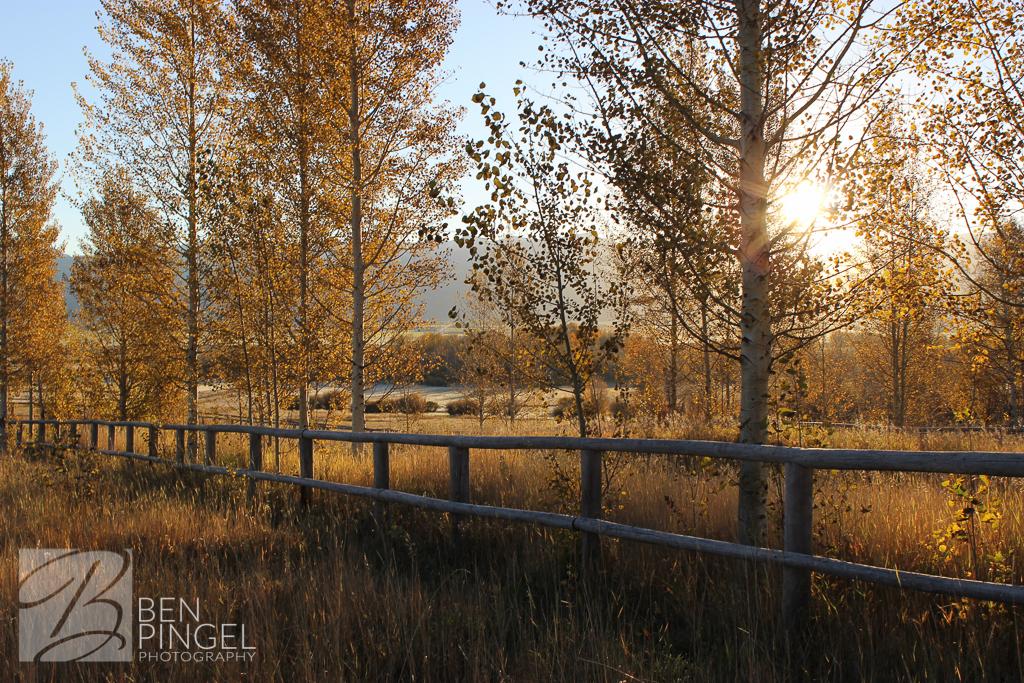 BenPingel_Victor_Sunrise_Original