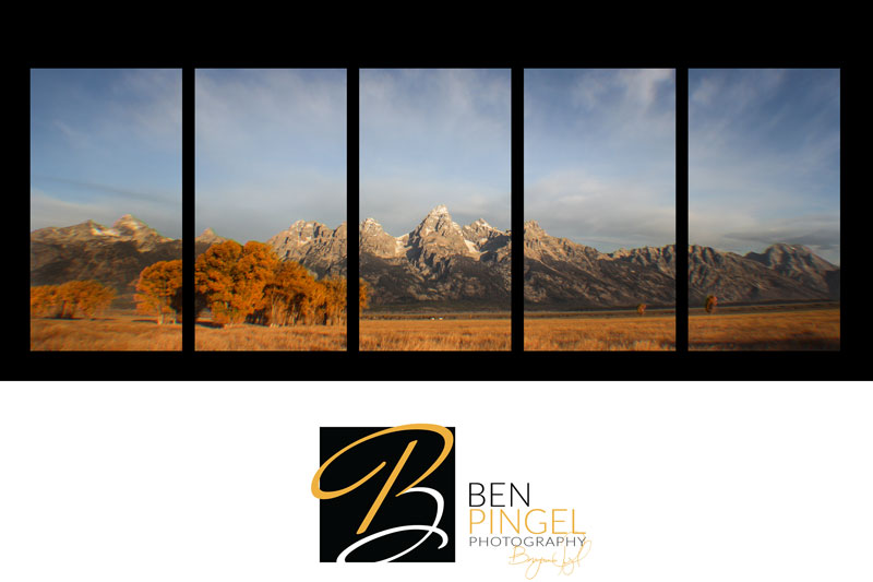 Ben-Pingel-Fine-Art-Template