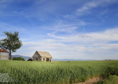 Abandoned house in field Bancroft, Idaho