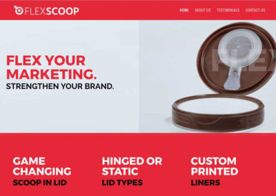 FlexScoop Website