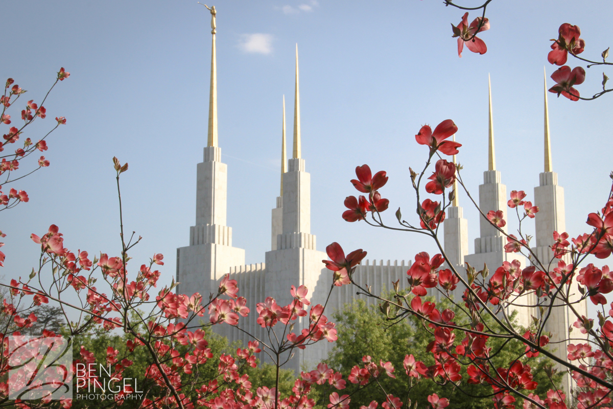 BenPingel Photography LDS Washington DC Temple Spring-2